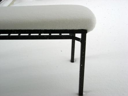 snowweb1.jpg
