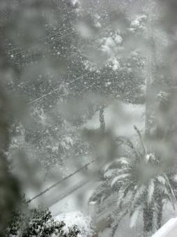 snowweb3.jpg