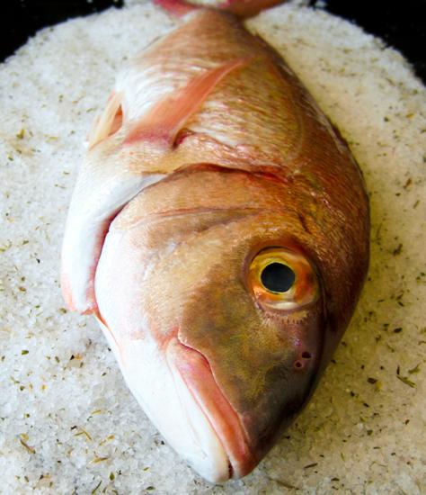 Fish baked in salt crust/ Ψάρι ψημ�νο σε κρούστα αλατιού