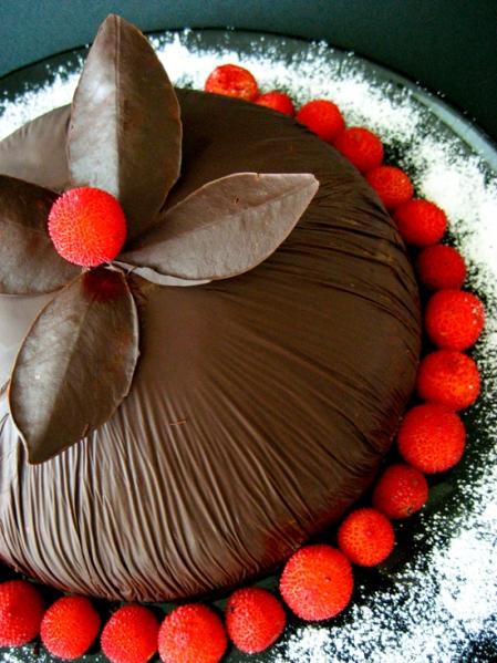 chocolate dome-2web